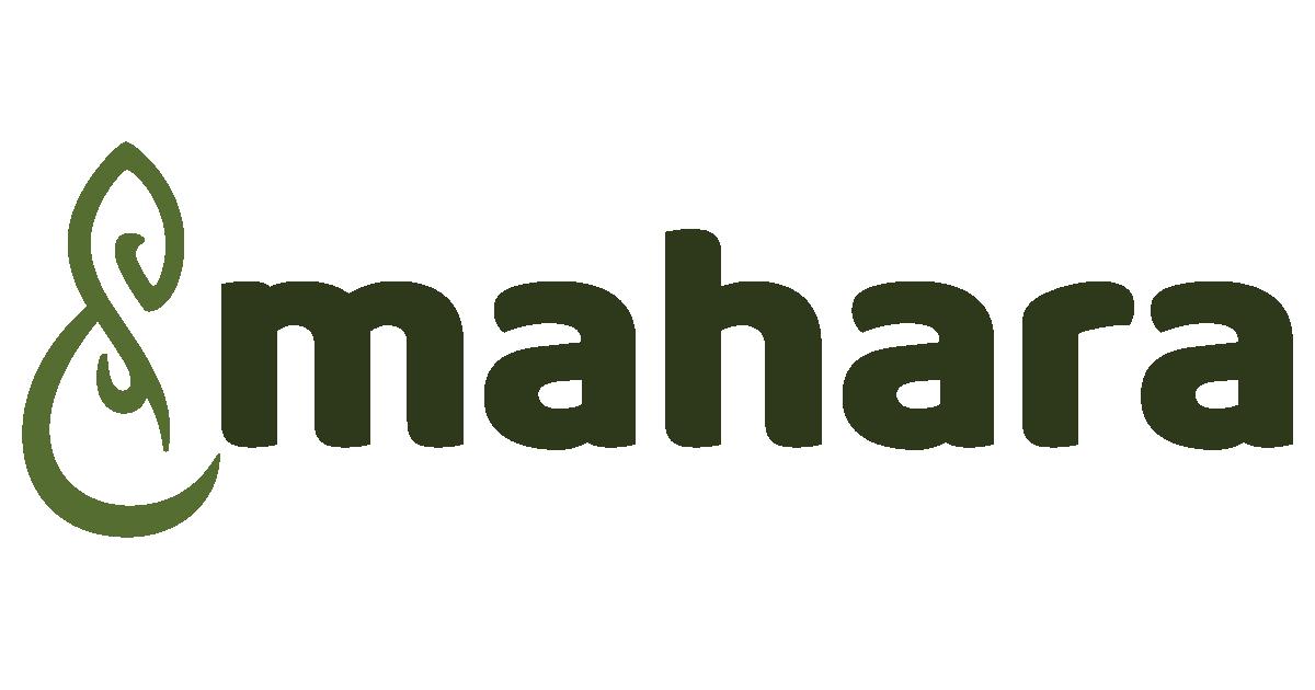 Das Parfum Inhaltsangabe Tsnmahara Eportfolio Und Social Networking